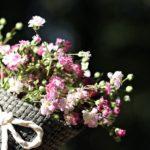 お花は「キレイのモチベーションのスイッチ」♪